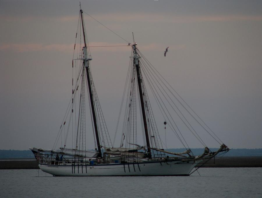 Sailboat Photograph - Tucked In by Lin Grosvenor