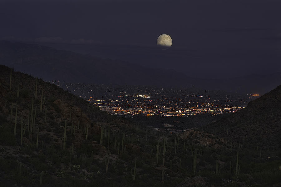 Tucson At Dusk by Lynn Geoffroy