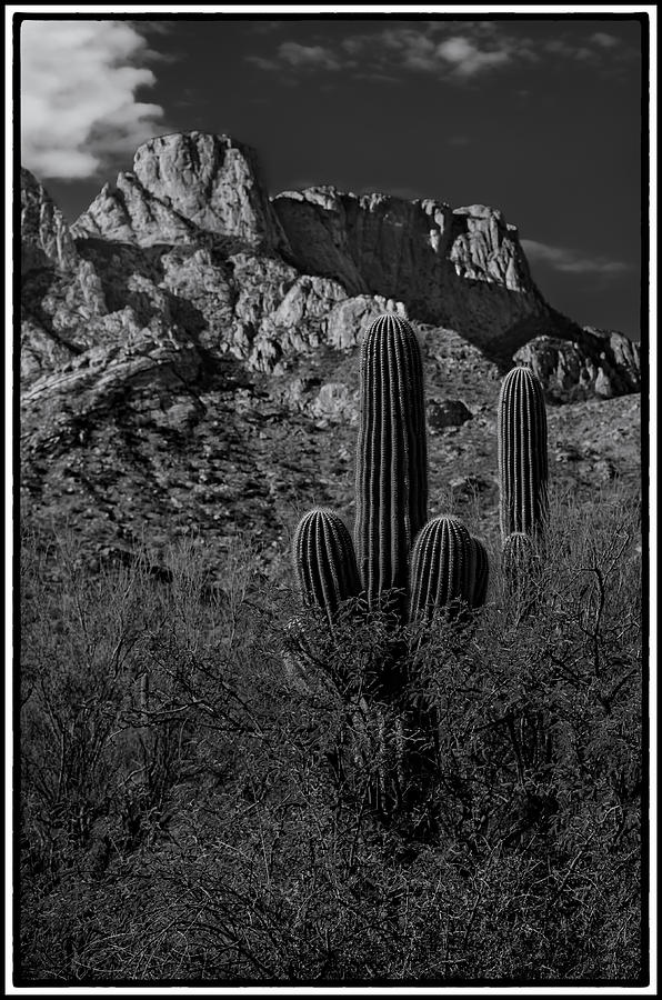 Tucson Topo Framed Photograph