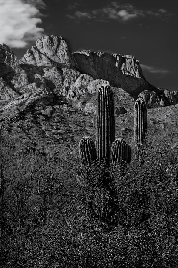 Tucson Topo Photograph