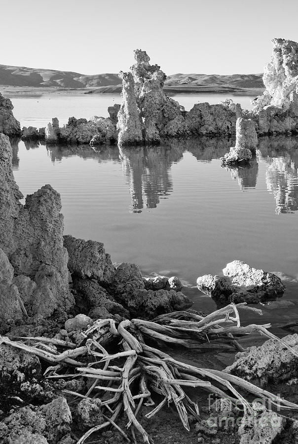 Mono Lake Photograph - Tufa In Black And White by Mae Wertz