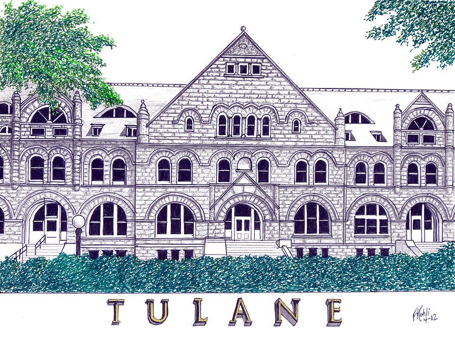 Pen And Ink Drawings Drawing - Tulane by Frederic Kohli