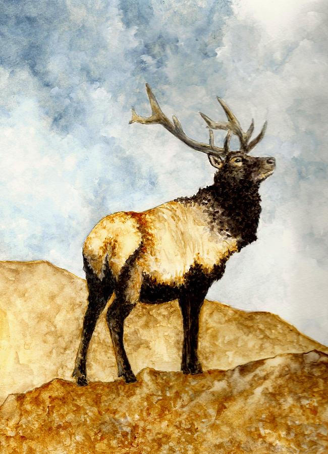 Animals Painting - Tule Elk by Michael Vigliotti
