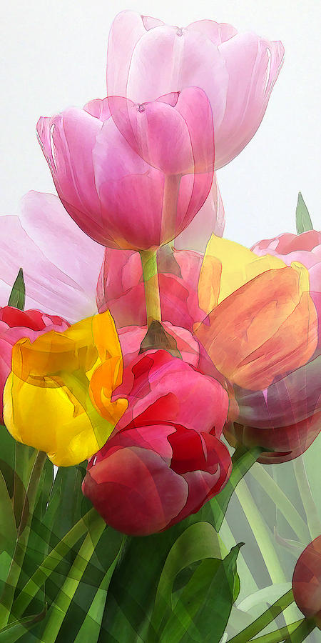 Flower Photograph - Vertical Tulips 2 by Rene Sheret