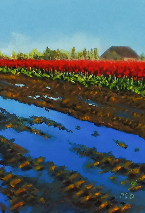 Patel Pastel - Tulip Tracks by Marie-Claire Dole
