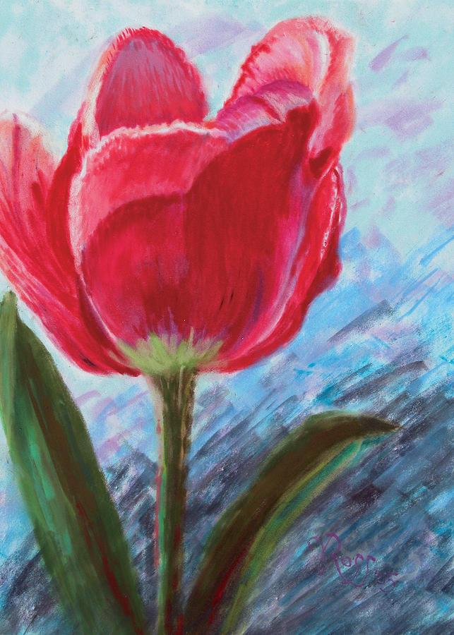 Tulip by Vicki Ross