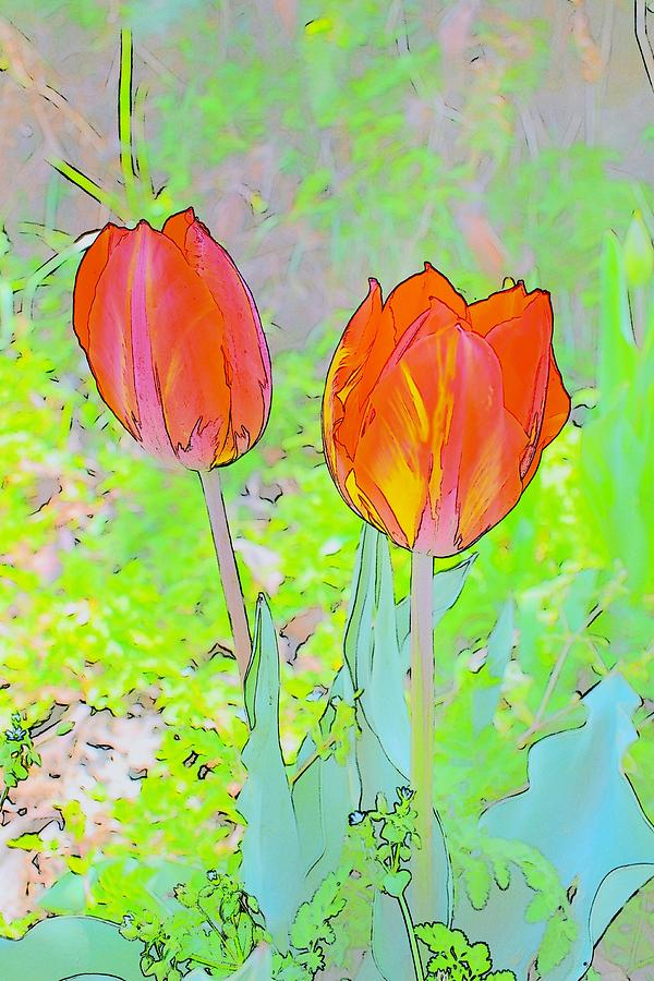 Tulips In Pastels 2 Photograph