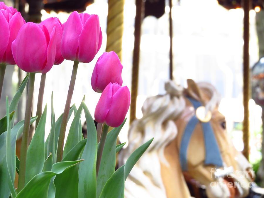 Tulip Photograph - Tulips by Ece Erduran