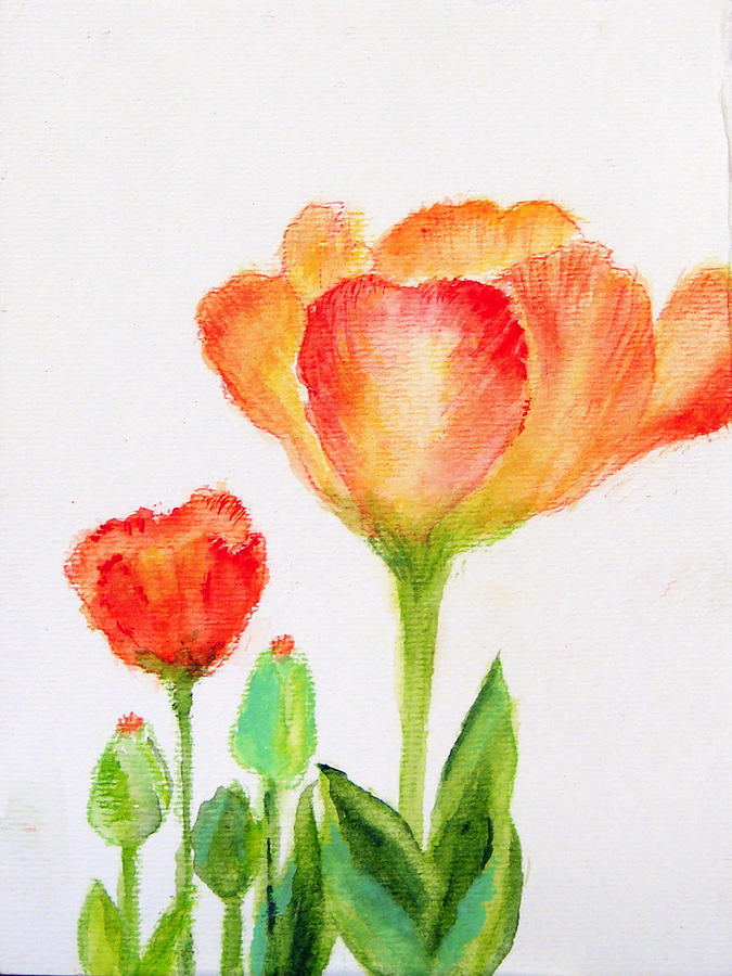 Floral Painting - Tulips Orange And Red by Ashleigh Dyan Bayer