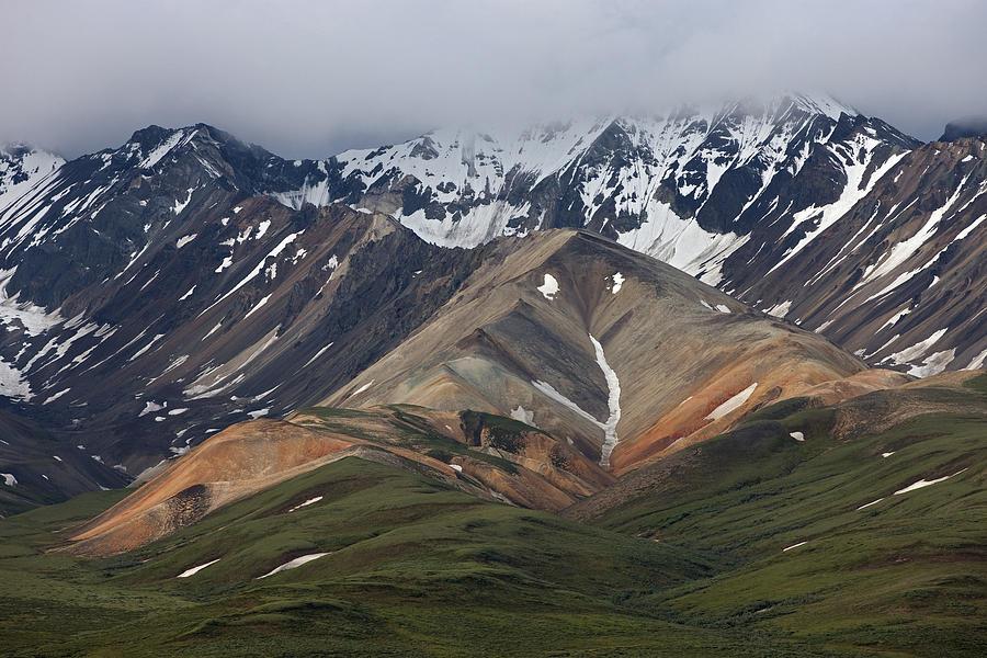 Tundra And Mountains Denali Np Alaska Photograph by Ingo Arndt
