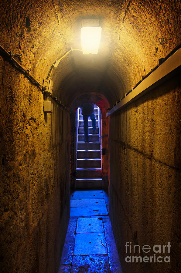 Above Photograph - Tunnel Exit by Carlos Caetano
