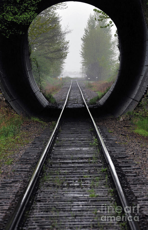 Railway Photograph - Tunnel Into The Mist  by Rod Wiens