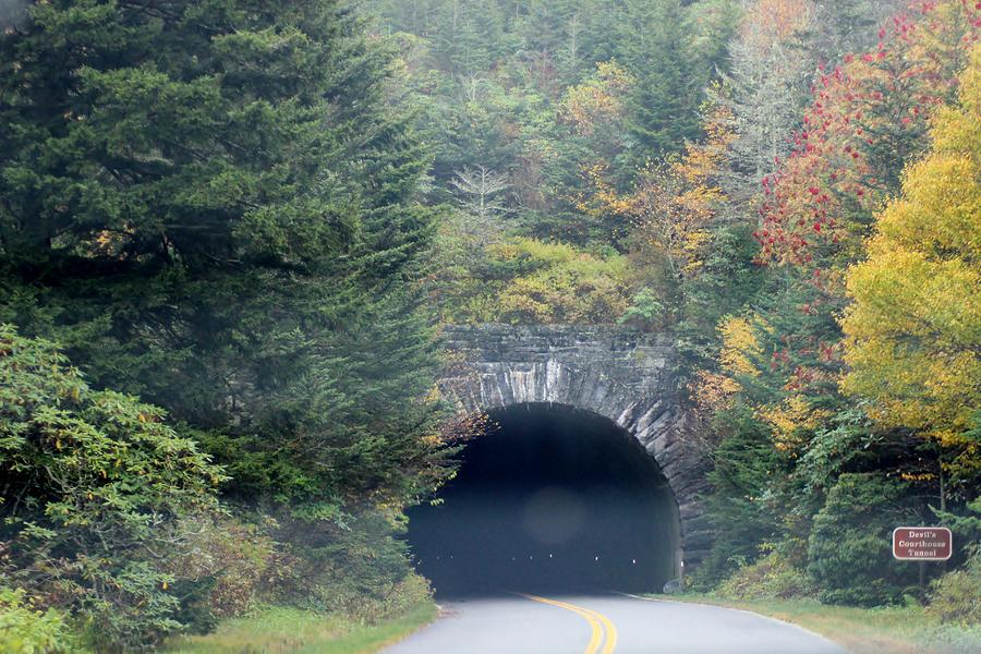 Landscape Photograph - Tunnel On Parkway by Melony McAuley