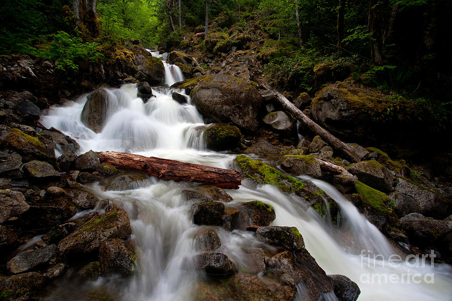 Cascades Photograph - Turbulent Flow by Mike Reid