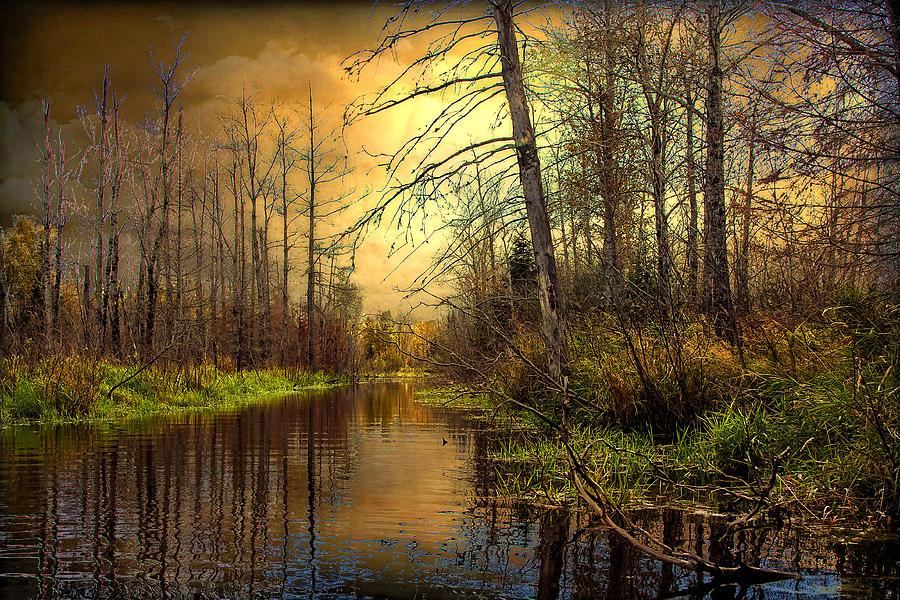 River Photograph - Turn Of Dawn by Gary Smith
