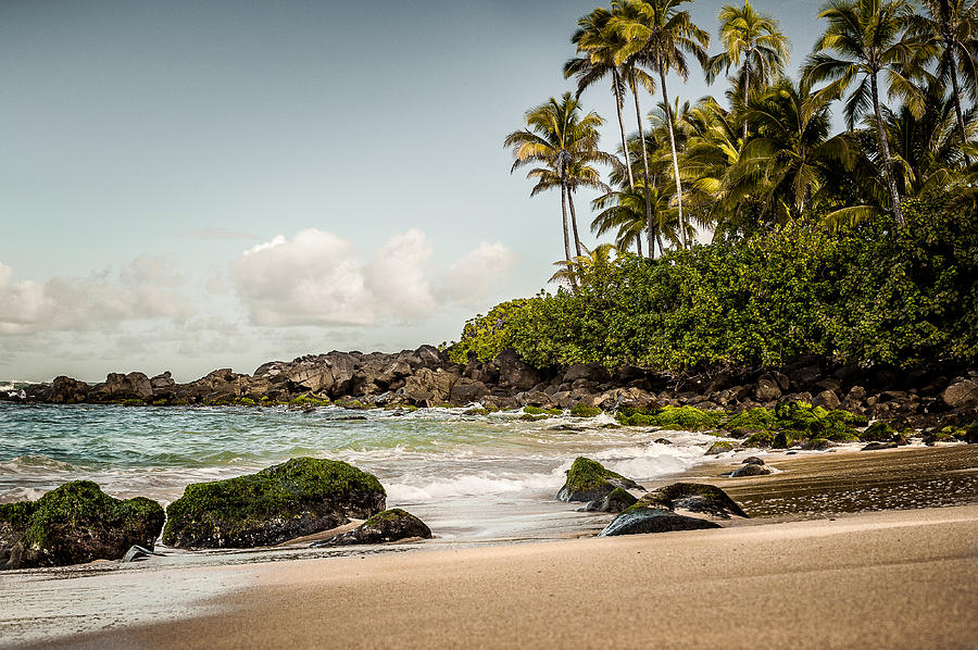 Landscape Photograph - Turtle Beach by Jason Bartimus