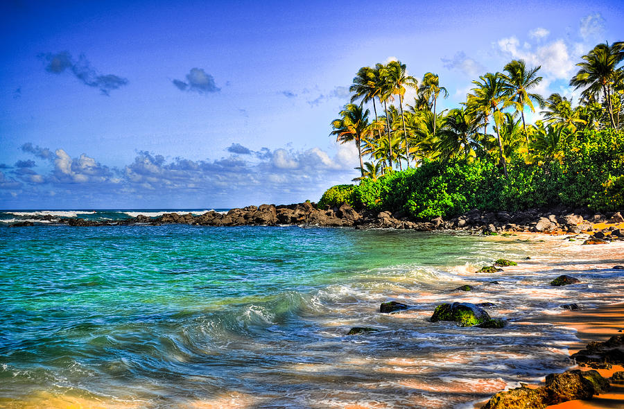 Photograph Photograph - Turtle Beach by Kelly Wade