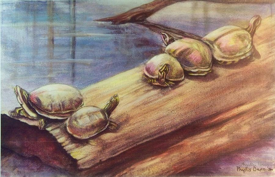 Turtle Gathering by Phyllis Dunn