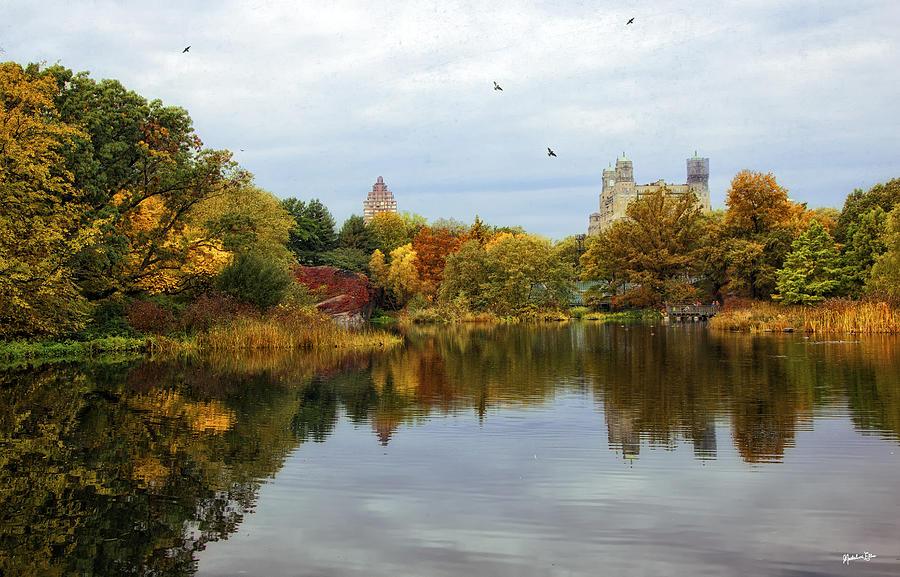 Case Design turtle phone case : Autumn Photograph - Turtle Pond - Central Park - Nyc by Madeline Ellis