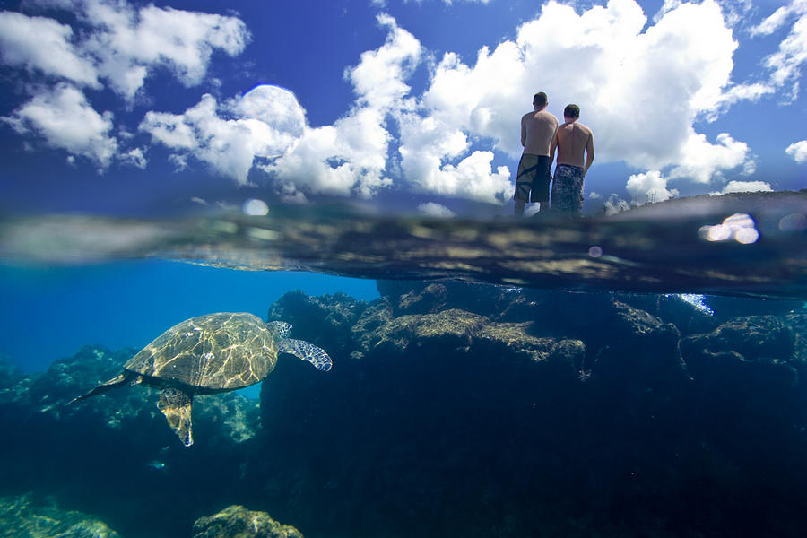 Ocean Under Water Photograph - Turtles View by Sean Davey