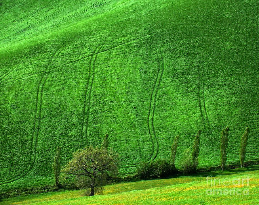 Italy Photograph - Tuscan Hills 05 by Giorgio Darrigo