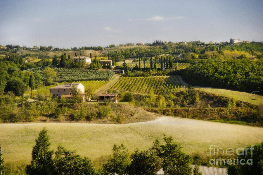 Itlay Photograph - Tuscan Landscape by Jim  Calarese