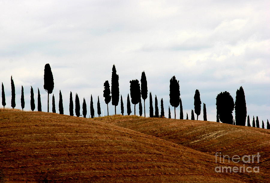 Tuscany Photograph - Tuscany Hill by Arie Arik Chen
