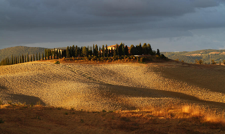 Agricultural Photograph - Tuscany Hills by Alex Sukonkin