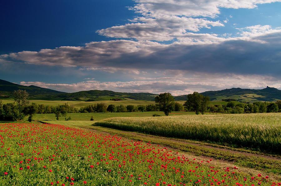 Tuscany Landscape Photograph by Landscape Beauty Italy