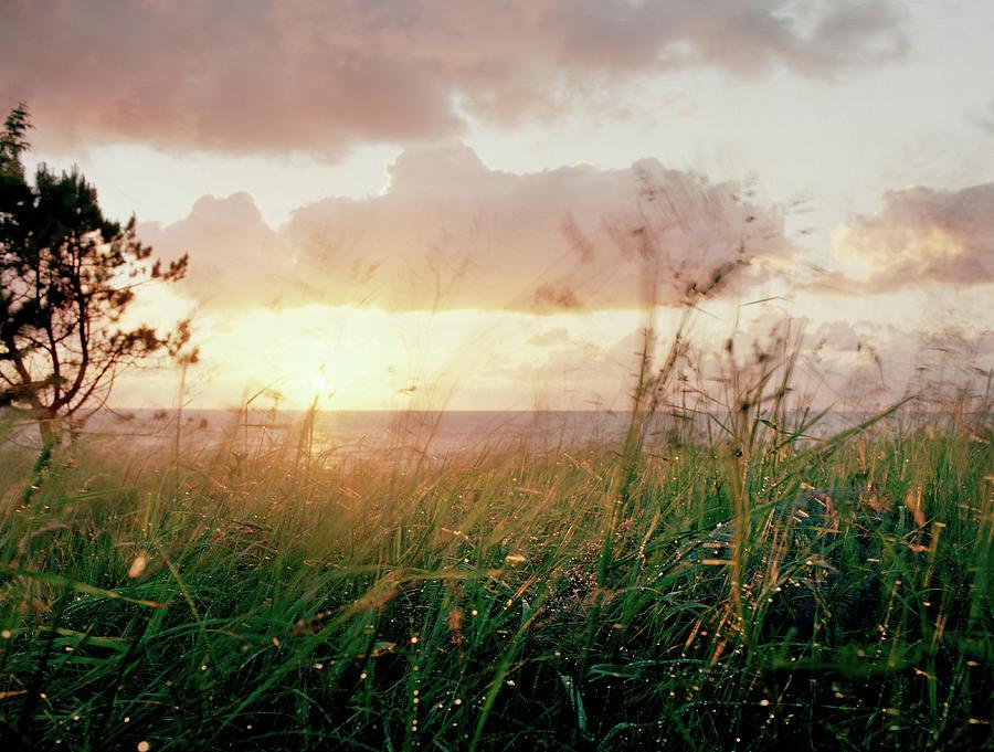 Twilight After Rain Photograph by Muriel De Seze