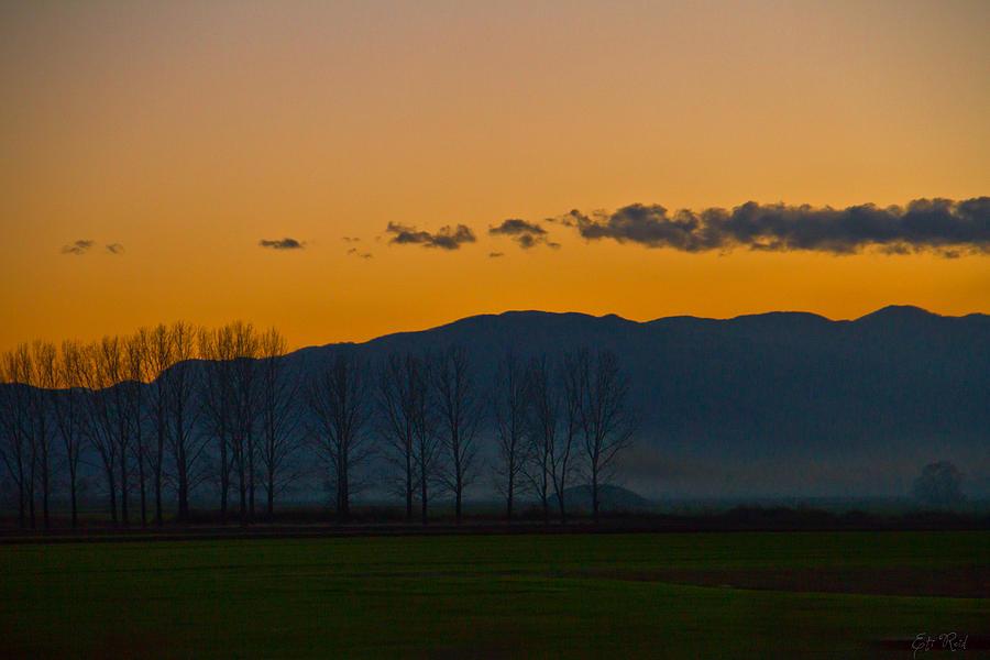 Evening Photograph - Twilight Mist by Eti Reid