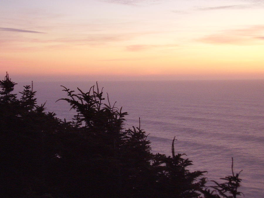 Landscape Photograph - Twilight On The Coast by Yvette Pichette