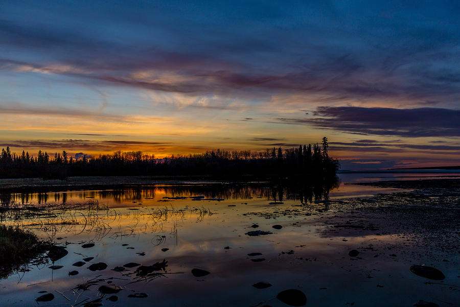 Background Photograph - Twilight Silhouette At Candle Lake by Gerald Murray Photography