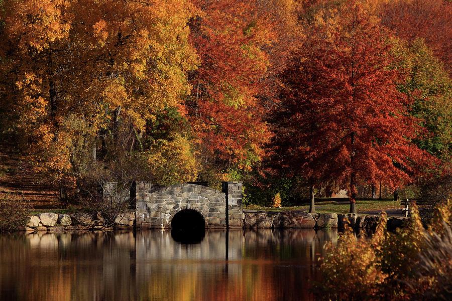 Autumn Photograph - Twin Brooks by Karol Livote
