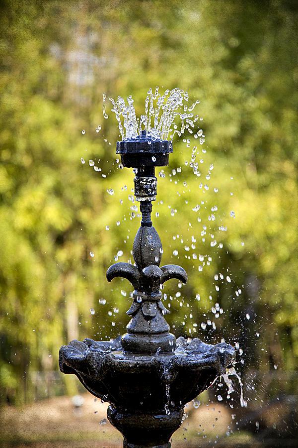 Twin Oaks Garden Fountain by Patricia Montgomery