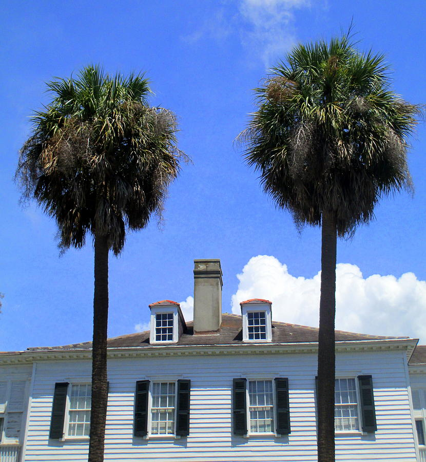 Charleston Photograph - Twin Palms South Battery by Randall Weidner