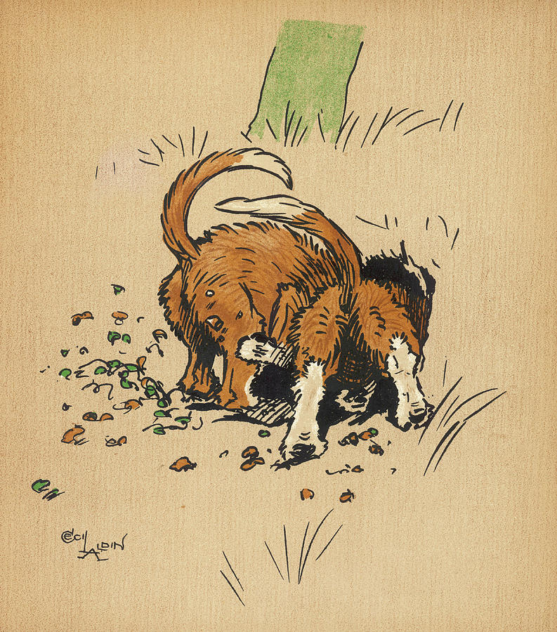 Puppy Drawing - Twin Puppies, Snip And Snap,  Try by Mary Evans Picture Library