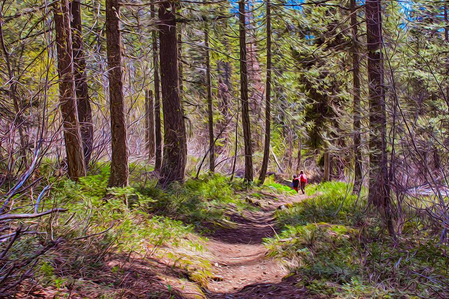 Park Painting - Twisp River Trail by Omaste Witkowski