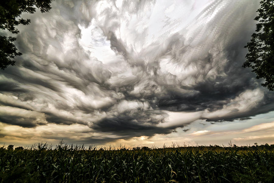 Matt Molloy Photograph - Twisted Sky by Matt Molloy