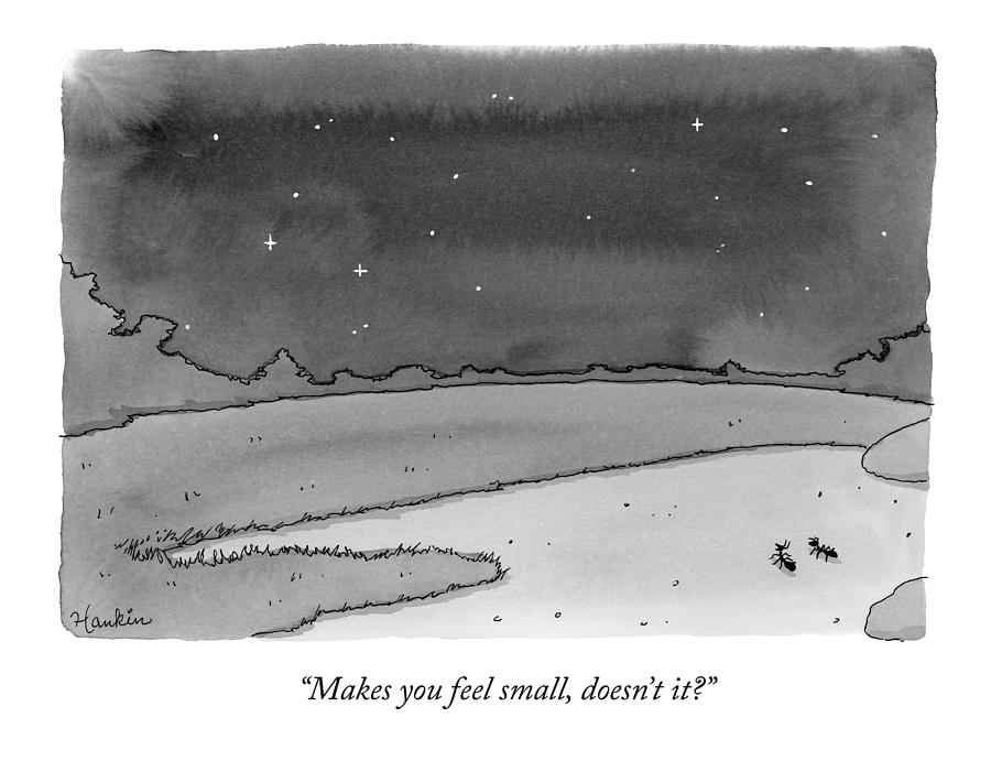 Two Ants Gaze Up At The Stars Drawing by Charlie Hankin