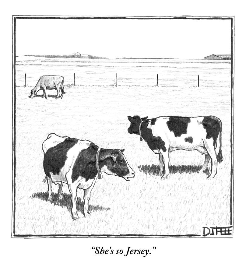 Two Averagely Spotted Cows Looking At A Plain Cow Drawing by Matthew Diffee