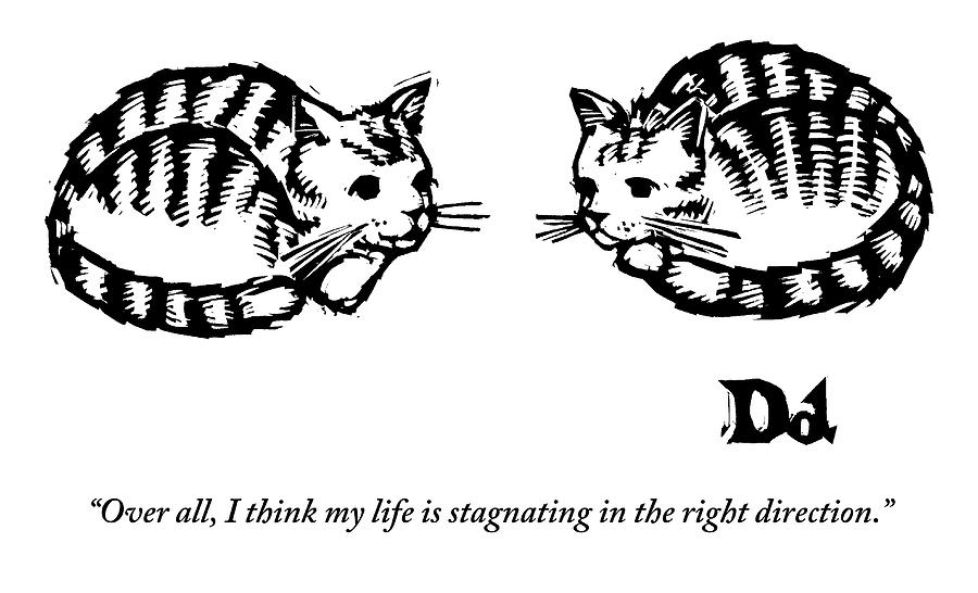 Cat Drawing - Two Cats Are Sitting Next To Each Other by Drew Dernavich
