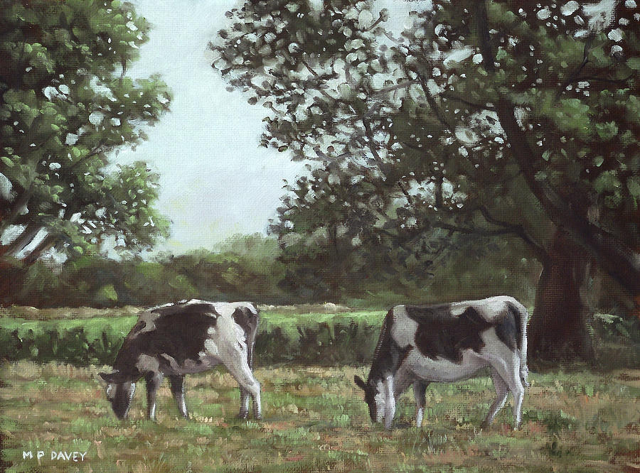 Cow Painting - Two Cows In Field At Throop Dorset Uk by Martin Davey