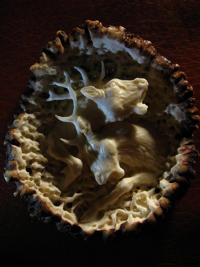 Carving Relief - Two Deer - Antler Burr Belt Buckle by Dmitry Gorodetsky