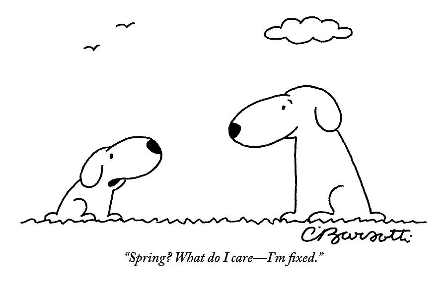 Two Dogs Are Seen Talking To Each Other Drawing by Charles Barsotti