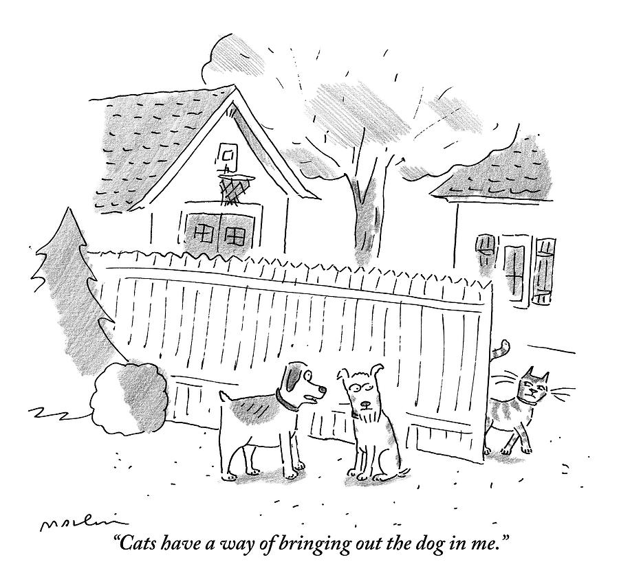 Two Dogs Are Speaking With A Cat Walking Near By Drawing by Michael Maslin