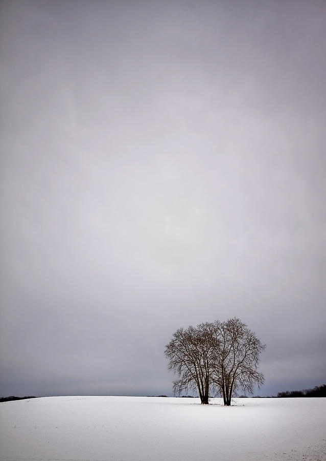 Country Photograph - Two by Evelina Kremsdorf