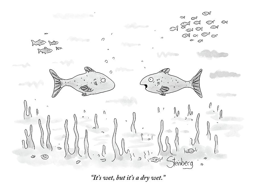 Two Fish Speak Underwater Drawing by Avi Steinberg
