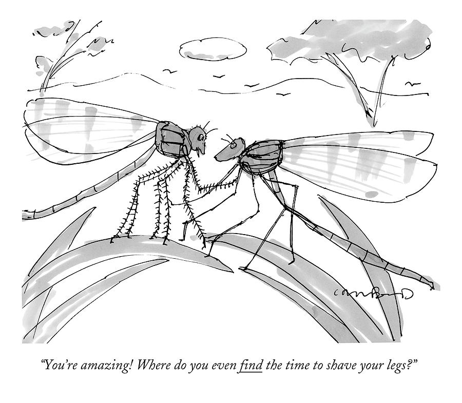 Two Flies In A Relationship Discussing Drawing by Michael Crawford