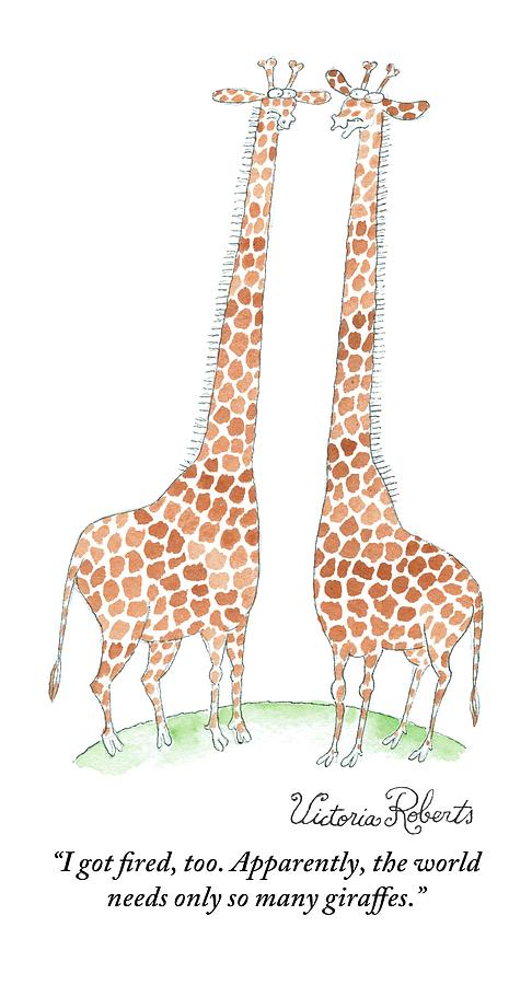 Two Giraffes Talking Drawing by Victoria Roberts